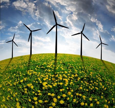 environmental: wind turbines on dandelion fields in the sunset