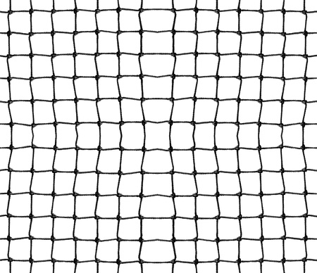 penetrate: Net isolated on white
