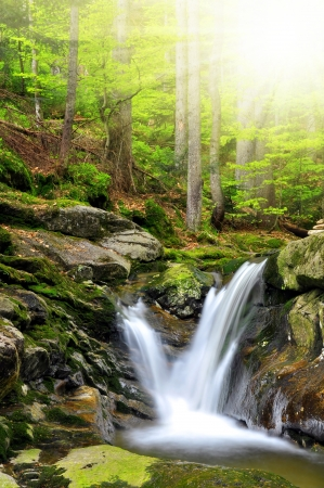 nant: beautiful waterfalls in the Bavarian Forest-Germany