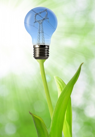 electric line: power line in the bulb  Stock Photo