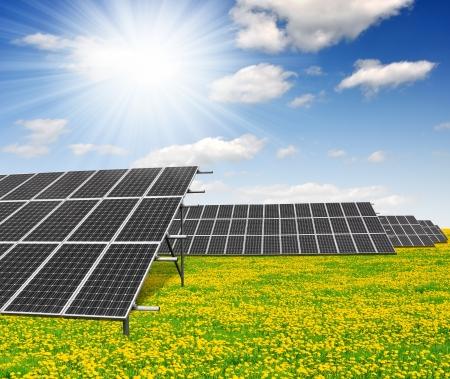 Solar energy panels on dandelion field against sunny sky Stock Photo - 14126388