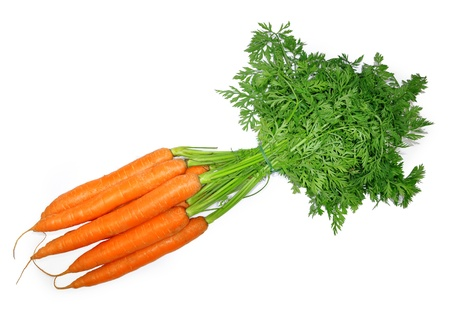 fresh carrots on white background  photo