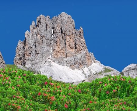Dolomite peaks, Rosengarten,Val di Fassa, Italy Alps Stock Photo - 14367167
