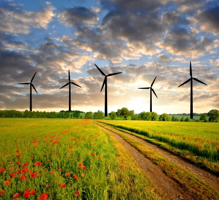Field way with wind power in the sunset  photo
