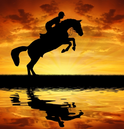steed: silhouette of a rider on a jumping horse