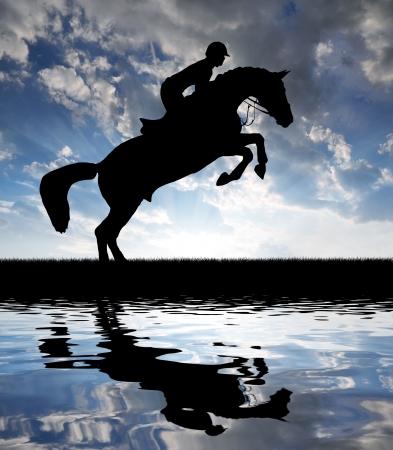 caballo saltando: Caballo silueta