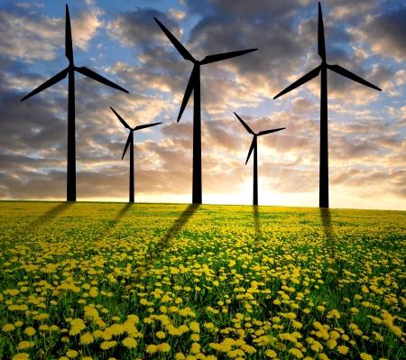 windturbine: sunset over meadow with wind turbines