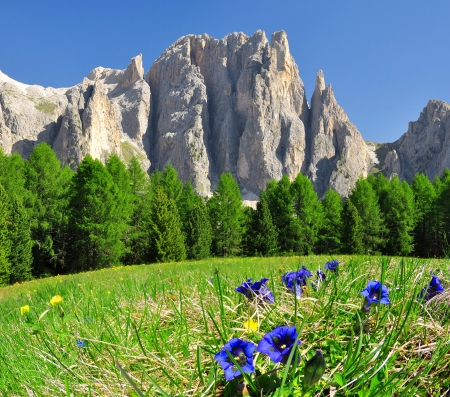 Dolomite peaks, Rosengarten,Val di Fassa, Italy Alps photo