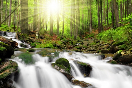 serene landscape: Waterfall in the national park Sumava-Czech Republic