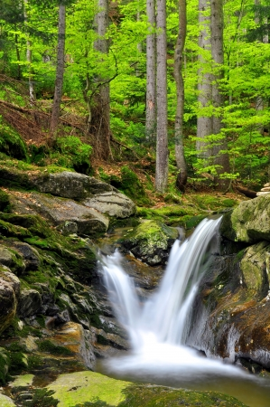spruit: beautiful waterfalls in the Bavarian Forest-Germany