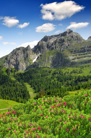 view of the mountain Brenta-Dolomites Italy  photo