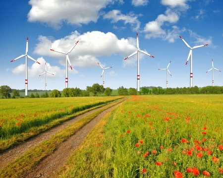 Field way with wind turbines  photo