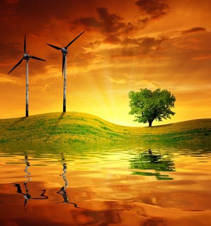 Sonnenuntergang über Wiese mit Windenergieanlagen Standard-Bild