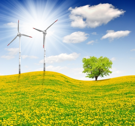 meadow with wind turbines  photo