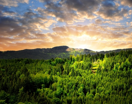 clearing: sunset over the national park Sumava in Czech Republic Stock Photo