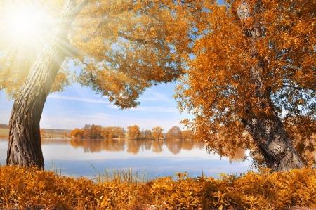 clearing: Autumn landscape in Czech Republic
