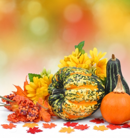 ash gourd: Harvested pumpkins with fall leaves  Stock Photo
