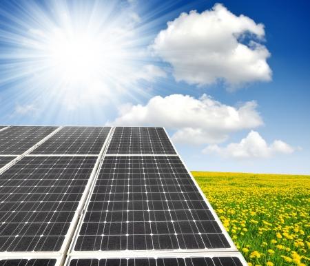 silicium: olar energy panels on dandelion field against sunny sky