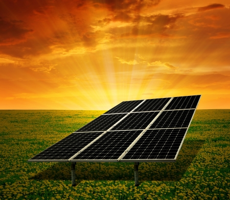 silicium: solar energy panels on the poppy field in the sunset
