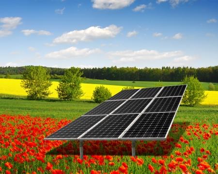 solar energy panels  on the poppy field  Stock Photo