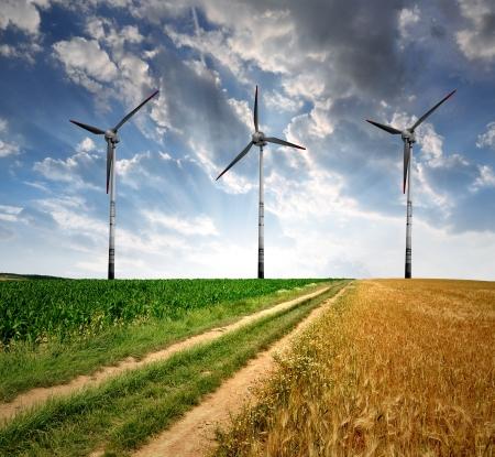 wind turbines: Field way with wind turbines Stock Photo