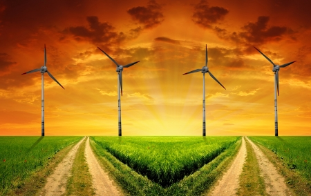 Field way with wind turbines in the sunset photo