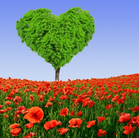 tree in the shape heart with red poppy  photo