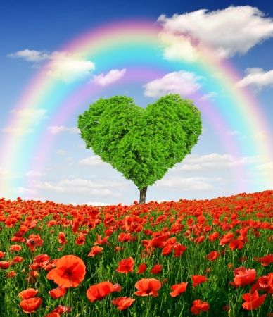 corazones azules: arco iris sobre el �rbol en la forma del coraz�n Foto de archivo