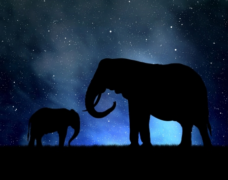 youngly: Silhouette elephants in the night sky Stock Photo