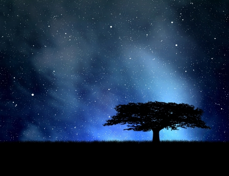 lone: silhouette tree in  night sky