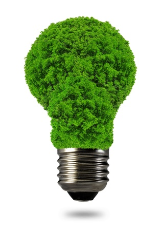 sustainable energy: eco energy bulb isolated on white