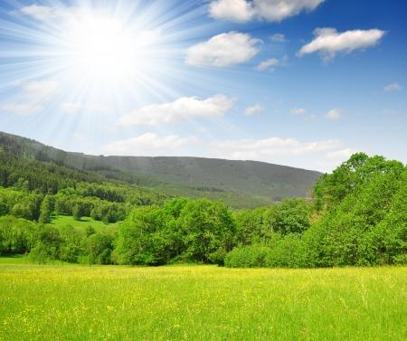 Spring landscape in the national park Sumava - Czech Republic Stock Photo - 17730850