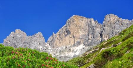 dolomite: Dolomite peaks, Rosengarten,Val di Fassa, Italy Alps