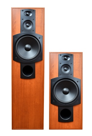 party system: Wooden speaker on the white
