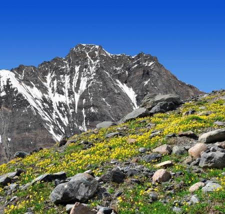dom: Montagne Dom - Alpes suisses Banque d'images