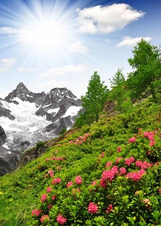 wallis: Beautiful mountain Ober Gabelhorn - Swiss alps