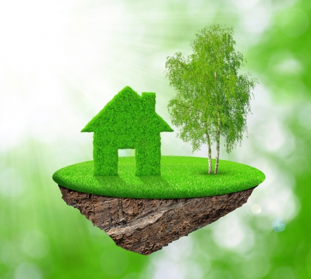 real estate agency: small island with green house and tree