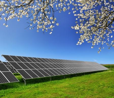 panels: Solar energy panels against blue sky
