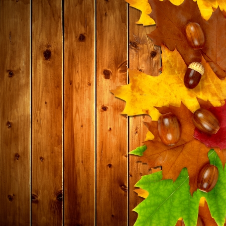 Autumn leaves with oak acorns on wooden background  photo