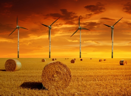 Straw bales with wind turbines in the sunset  photo