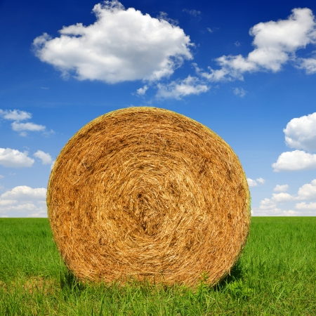 straw bale in a lush green field and blue sky Stock Photo - 22752490