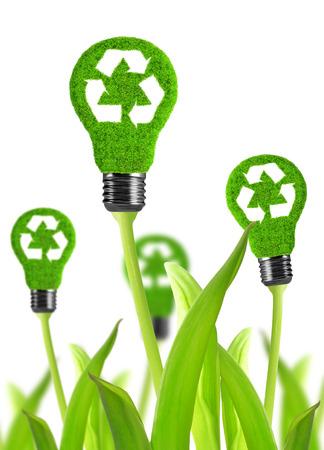 renewable resources: eco energy bulb isolated on white
