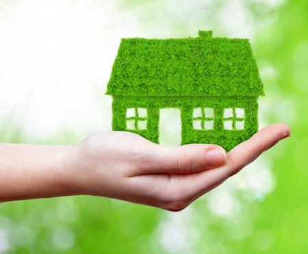 grüne Haus in der Hand