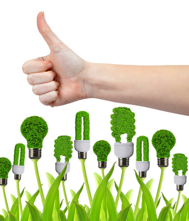 green thumb: Hand with thumb up and eco energy bulbss