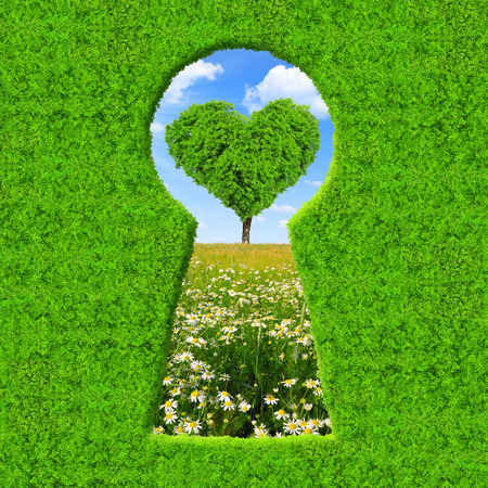 garden key: Green keyhole  On the background tree in the shape of heart Stock Photo