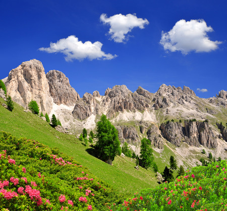 fassa: Dolomite peaks in Val di Fassa, Italy