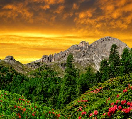 fassa: Dolomite peaks, Rosengarten in the sunset,Val di Fassa, Italy Alps