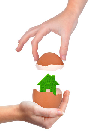company ownership: Hand holding green house in eggshell isolated on white