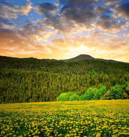 Sunset over the Bavarian Forest National Park - Germany photo