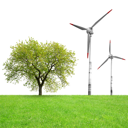 strong wind: Tree with wind turbines on meadow